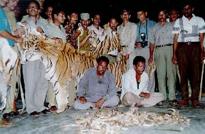 Group of Tiger Poachers - Save the Tigers