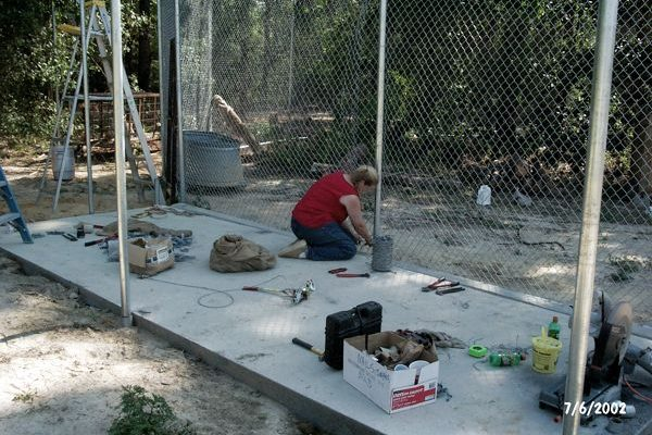 Tigra's Habitat Construction Photo 21