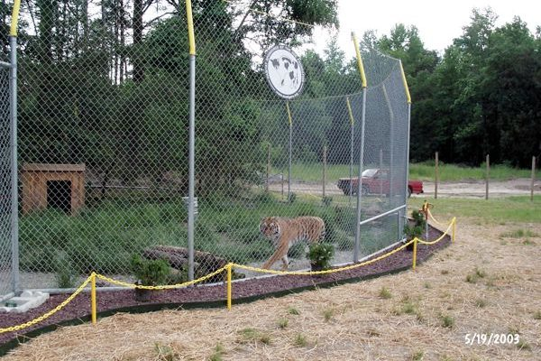 Tigra's Habitat Construction Photo 52