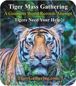 Tigers need your help.