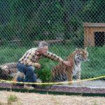 Jason and Tigra tiger.